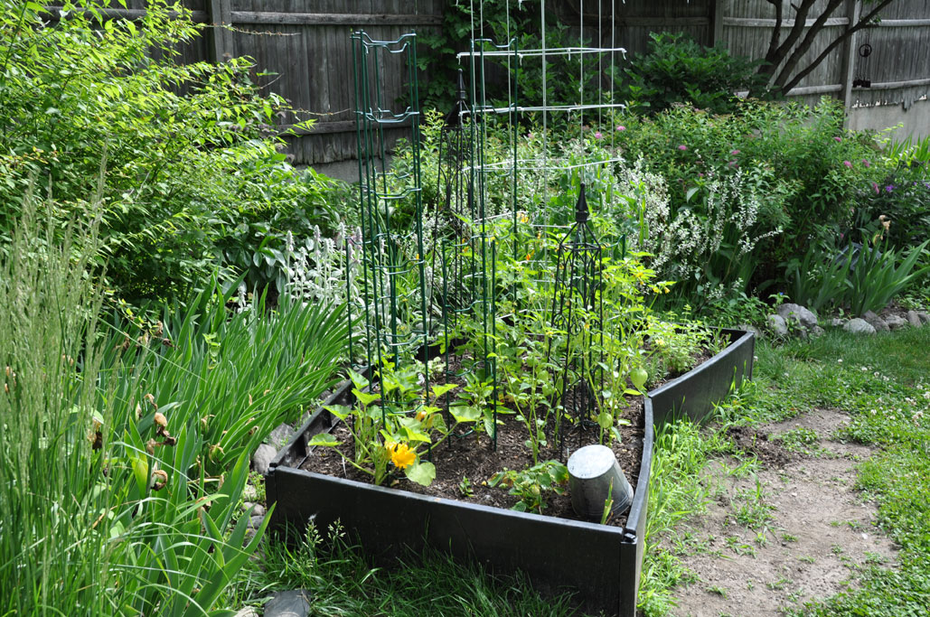 Container Vegetable Garden Box Ideas Valdolla
