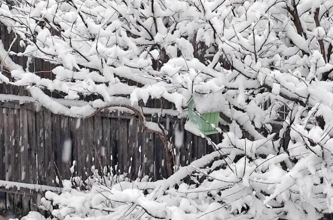 SnowJanBirdHouseCloseup